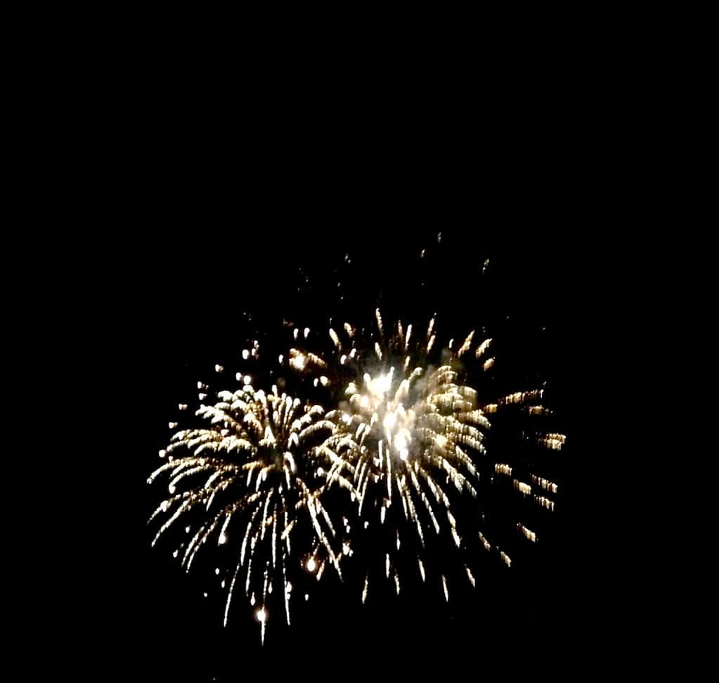 exploding fireworks in the night sky
