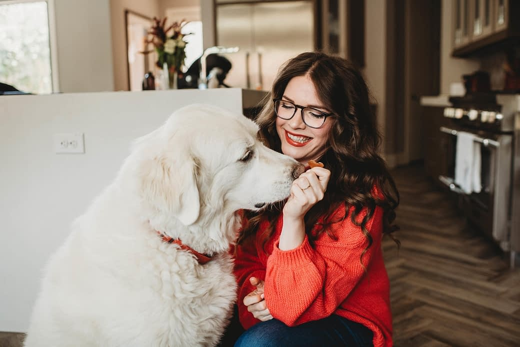 how to find the healthiest dog food large white dog getting treats
