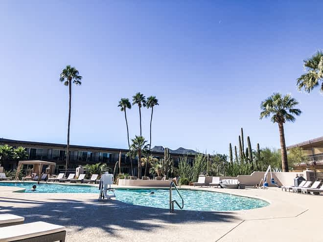 the pool at a wellness retreat in phoenix with palm trees in the background