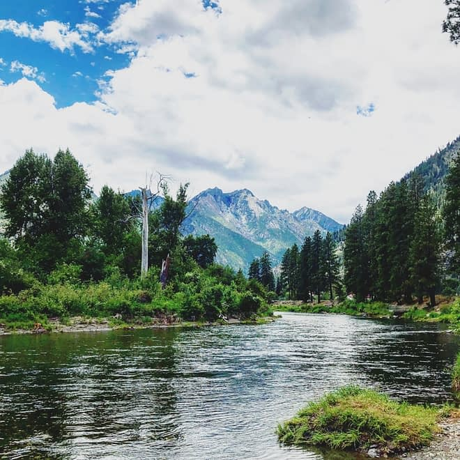 Wild Water River Guides