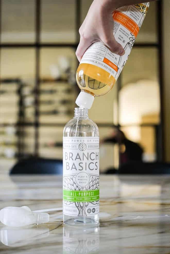 Safer Cleaning Products Branch Basics